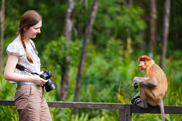 Zoologist Salary: What The Job Description Entails For A Zoologist